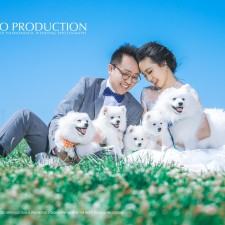 professional pre-wedding photography at Sydney悉尼婚纱照